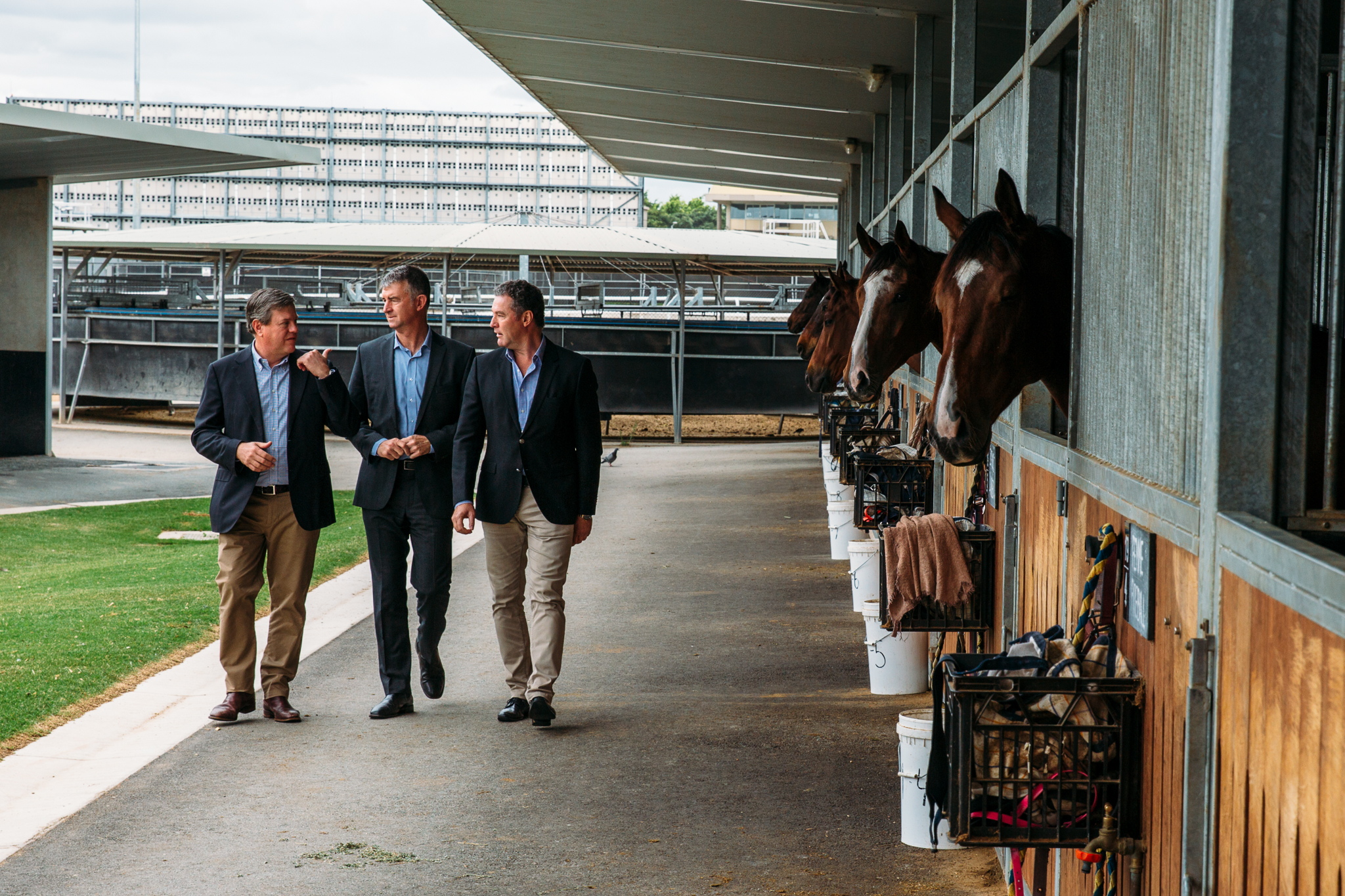 With trainer Rob Heathcote, Tim Mander MP and Tim Nicholls MP at Eagle Farm